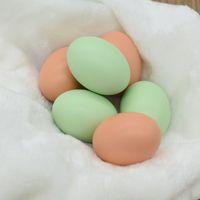 Wholesale Painting wooden toys AIDS kindergarten DIY egg egg egg wood house simulation g