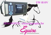 Wholesale Veterinary Ultrasound Scanner Ew B10V with Linear Probe L7 for Vascular Musculoskeletal Pediatrics Small and Large Animal