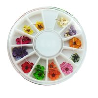 Wholesale small box real dried flowers colors inside five petals nail stickers Pressed flowers glass globe vial pendant fillers