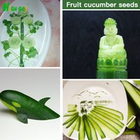 Wholesale Super Sale New Cucumber Mini Vegetables Seeds Decoration Garden Supplies