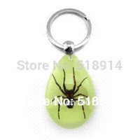 amber bug jewelry - Real Bug Spider in Resin Amber Keychains Cool Key chains Insect Specimen Keyring Spider Man Gift Fashion Jewelry Fee Shippingr