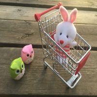 Wholesale Parrot Toy Mini Shopping Cart Supermarket Handcart Desktop Decoration Storage Pen Holder Bird Cat Hamster Intelligence Toy Multi color A