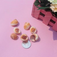 beauty platform - Yulou beauty discus hermit crab small conch shell fish platform wedding gifts