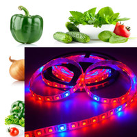 aquarium grow lights - 5m LED Growing DC12V LED Strip Light Waterproof IP65 Red Blue for Aquarium Greenhouse Hydroponic Plant Flower Veg Grow Light