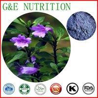 Wholesale GMP factory supplier Powder Natural Indigo Extract g