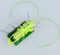 Wholesale Solar Toy Mini Solar Grasshopper Educational Toy for Kids toys age toy story soft toy