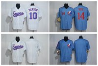 Wholesale Montreal Expos Gary Carter Andre Dawson Pete Rose Vladimir Guerrero Tim Raines Pedro Martinez Throwback Baseball Jerseys