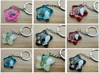 Wholesale Fashion Jewelry Key Chains Newest Fashionable Real Seahorse Insect Decoration Jewelry