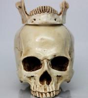 Wholesale Medical Archeology1 human skull model life size resin skull model art class model teaching delicate human skeleton model B180