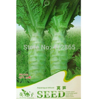 asparagus vegetable - original package Stem Lettuce Seeds Celtuce Chinese Asparagus Lettuce Vegetable Seeds3 bags per s