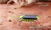 Wholesale Solar grasshopper Solar Cockroach Educational Toys Solar Powered Grasshopper Solar Toy