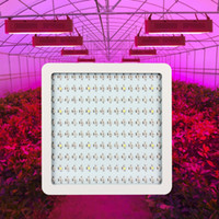 Wholesale 1600W Double Chips W Full Spectrum Led Grow Light Hydroponic Lighting For Greenhouse Indoor Plants Grow Box Tent Hydroponic Systems