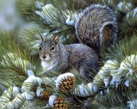 animal crossing pictures - new Full diamond embroidery mosaic diamond cross stitch Needlework diamond painting D diy animal squirrel picture Home Decor
