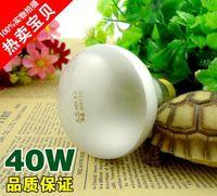 Wholesale Parrot crawler tortoises heater heating lamp tortoise lizards keep palace UVA W heating lamp