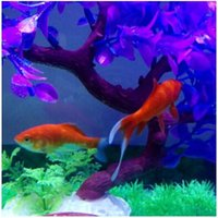 Wholesale The new Magical novel Robot Fish Activated Turbot Electronic Pets Toys Electric Robofish Swimming Clownfish