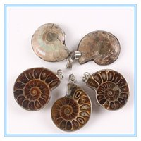 ammonite shell - 10Pcs Exotic Handmade Natural Ammonite Conch Shell Stone Pendant Bead Exquisite Fashion Brown Snail Agate Pendant For Wedding Men Women
