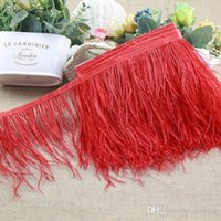 Wholesale Ostrich Feather Trimming meters Many Colors Ostrich Feather Fringe inch in Width Feather Boa Stripe for Party Clothing Accessories