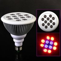 Wholesale E27 LED Bulb Grow Lamp W Red Blue LED Plant Lamp Hydroponic Grow Light Bulbs for Garden Greenhouse