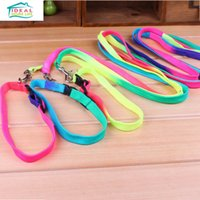 al por mayor accesorios para perros-Moda de alta calidad Pet Doggy Cat Colorido Leash Collar Perro Puppy Lead Rope Accesorios