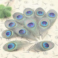 Wholesale 10pcs Real Peacock Feather Trimmed peacock eye costumes Necklace earrings accessories wedding Decorative inch
