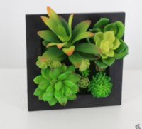 mounted photo frames - artificial flower Succulent plants with plastic photo frame D Solid wall hanging Decoration multi design mix