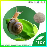 Wholesale Snail protein high quality in bulk stock welcome inquiry g