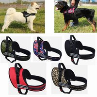 Wholesale XS XXL Sports Dog Harness Metal D ring No Pull Nylon Dog Harness Vest with Hand Strap for Small and Large Dogs Pitbulls