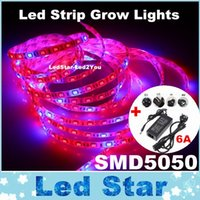 aquarium supplies lighting - High Quality SMD Led Grow Flexible Strip Light Red Blue Aquarium Greenhouse Hydroponic Vegetables Grow Lamp RF A Power Supply
