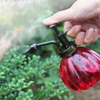 Zakka Vintage декоративный лейка для баков распылитель для опрыскивателя для суккулентных растений бонсай инструменты для садоводства