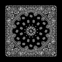 Wholesale hot sale x55CM high quality hip hop printed cotton bandana unisex cotton head scarf free and fast shipping