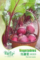 beets vegetables - Potted vegetable seeds Red beet seeds Red beet Red root sugar beet Sweet package bags per