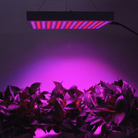 Wholesale 1PCS W V Led Blue Red Plant Grow Light Lamp Grow Lighting Planel LED DIY Grow Light