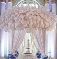 Wholesale CM Ostrich Feathers for Wedding Decoration Centerpiece HJIA802