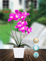 aa plastics - Led light AA batteries operated orchid arrangement for home decoration party xmas decoration festival gift
