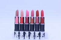 brand lip stick - Hot New brooke candy MATTE LIPSTICK Waterproof Lip Gloss colors Brand makeup lip stick