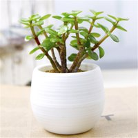Wholesale Gardening Flower Pots Small Mini Colorful Plastic Nursery Flower Planter Pots Home Office Desktop Garden Deco Gardening Tool jy333