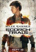 arts trial - New Maze Runner Scorch Trials Thomas Brodie Art Silk Poster x36inch