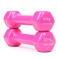 Wholesale Dumbbells kg pieces pair Home Fitness Equipment halteres de academia dumbbell weights pesas