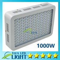 Wholesale Recommeded High Cost effective W LED Grow Light with band Full Spectrum for Hydroponic Systems mini led lamp lighting led lights
