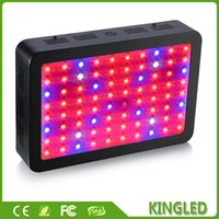Wholesale 800W Double Chips Full Spectrum LED Grow Light nm For Indoor Plants and Flower Phrase Grow Led Lights