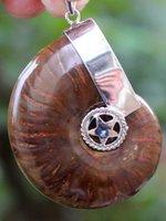 ammonite iridescent - Iridescent Ammonite Facet Rough Specimen Fossil Pendant PC