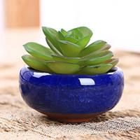 Wholesale New Arrival Home Decor Mini Round Juicy Plants Flowers Vase Ceramic Flowerpots Small Bonsai Pot DIY Accessories