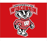 badger flag - Wisconsin Badgers flag ftx5ft Banner D Polyester NCAA Flag metal Grommets