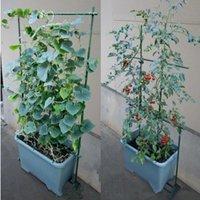 Wholesale Plastic Pergola Gardening Support CM