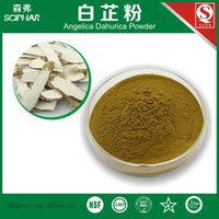 angelica powder - g Ten years QS factory selling angelica powder of qualification complete quality assurance