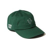 ball cactus - 2016 fashion Baseball Hats green cactus cap snapback caps For Men Women Casquette Gorras sports Hip Hop Bones brand sun hat Drop Shipping