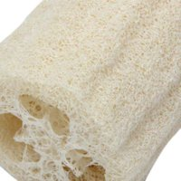 Wholesale PHFU luffa naturel eponge de bain douche laveur luffa soap luffa sponge douche