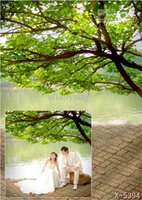 Wholesale Y CMThe trees along the river background cloth photography backgrounds
