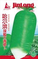 best vegetable gardens - 1 pack10g bag seeds green Fruit radish garden radish seed Vegetable Seeds Best Quality Radish Seeds