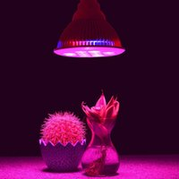 Wholesale E27 W LED Plant Lamp Hydroponic Grow Light Bulb For Garden Greenhouse Hot Search